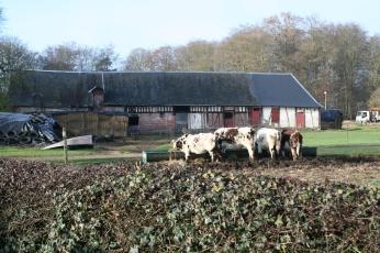 Rural Montigny